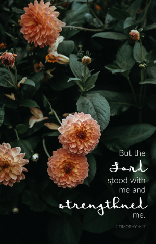 """But the Lord stood with me and strengthened me."" 2 Timothy 4:17 