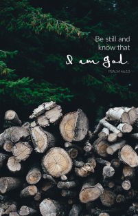 """BE STILL and know that I am God."" Psalm 46:10 