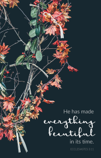 """He has made everything beautiful in its time."" Ecclesiastes 3:11 