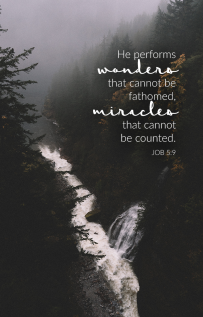 """""""He performs wonders that cannot be fathomed, miracles that cannot be counted."""" Job 5:9 