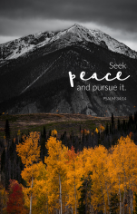 """Seek peace and pursue it."" Psalm 34:14 