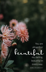 """""""You are altogether beautiful my darling, beautiful in every way."""" Song of Songs 4:7 